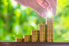 Hand put growing coins stacks with green bokeh background. Finan. Hand put growing coins stacks on brown wood with green bokeh background. Financial growth Stock Photo