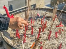 Put incense stick in to the pot. Hand put incense stick in to the pot Royalty Free Stock Photo