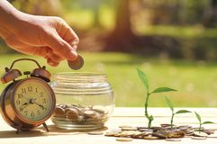 Free Hand Put Money At Jar With Alarm Clock And Small Tree Growth Up On Staked Of Coins On Wood Background Stock Photography - 99957392