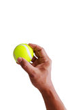 Hand put tennis ball Stock Image