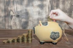 The hand puts a coin in a piggy bank stock photos