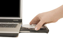 Hand puts a disk in laptop Stock Photo