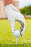 Hand puts the golf ball on a tee Royalty Free Stock Photography