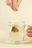 Hand puts the tea bag in cup of boiling water Royalty Free Stock Photos