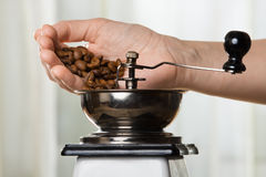 Hand putting coffee beans to grinder Royalty Free Stock Images