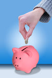 Hand putting a coin euro. Female hand putting a coin euro in a piggy bank Royalty Free Stock Photos