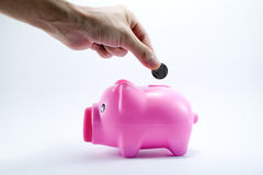Hand putting coin into piggy bank. Men's hand putting coin into piggy bank Stock Photography