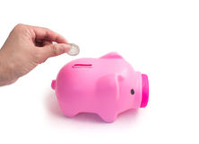 Hand putting a coin into piggy bank Royalty Free Stock Images