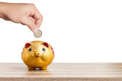 Hand putting euro coin into piggy bank on white background Royalty Free Stock Photo