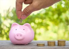 Hand putting gold coins into piggy bank Stock Photo