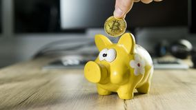 Hand putting golden bitcoin in to piggy bank money box with a computer on background. Cryptocurrency investment concept. BTC coin as symbol of electronic Stock Photo