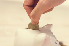 Hand putting golden coins into a pink piggy bank. Japanese Yen. Royalty Free Stock Photo