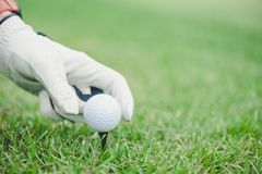 Hand putting golf ball on tee in golf course Royalty Free Stock Images