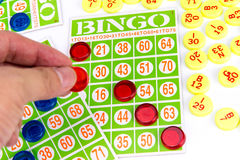 Hand putting last chip to be winner of bingo game Royalty Free Stock Images