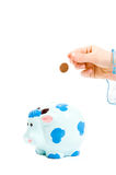 Hand is putting money into piggy bank Royalty Free Stock Photo