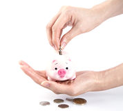 Hand putting money in a piggy bank Stock Images