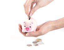 Hand putting money in a piggy bank Stock Photography