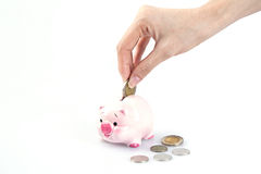 Hand putting money in a piggy bank royalty free stock photo