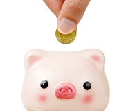 Hand putting money to piggy bank Royalty Free Stock Photos