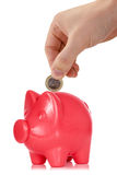 Putting one Euro coin into the piggy bank Royalty Free Stock Images