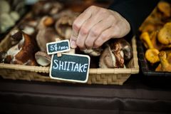 Hand putting a price sign on mushrooms basket stock photo