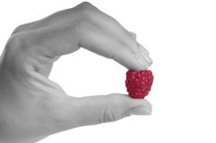 Hand with raspberry Royalty Free Stock Images