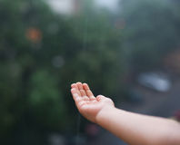 Hand reached for rain water. Child with hand reached for rain water Royalty Free Stock Photography