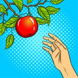 Hand reaches for apple on tree pop art vector Stock Images