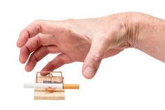 Hand Reaching for Cigarette in Mousetrap Stock Photo