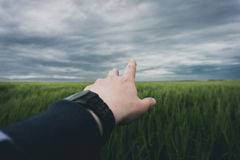Hand reaching out to field Royalty Free Stock Photo