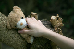 Hand reaching for a teddy bear. A young girl's hand reaching to hold a teddy bear up on a tree Royalty Free Stock Photography