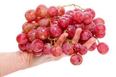 Hand with red grapes Royalty Free Stock Photos