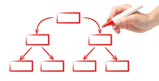 Hand red marker drawing diagram scheme empty flow chart royalty free stock photography