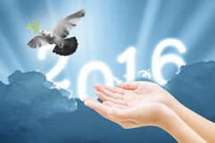 Hand releasing a bird into the air on sky 2016 background. All concept , beauty ,freedom,peace ,spirituality stock photography