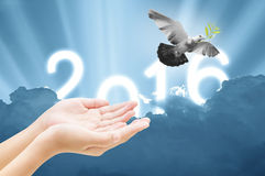 Hand releasing a bird into the air on sky 2016 background , all. Concept , beauty ,freedom,peace ,spirituality stock images