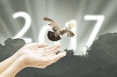 Hand releasing a bird into the air on sky 2017 background happy. New year concept retro vintage stlye royalty free stock images