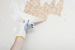 Hand removing wallpaper Royalty Free Stock Image