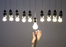Hand replacing light bulb Stock Photos