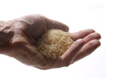 Hand with rice Royalty Free Stock Photography