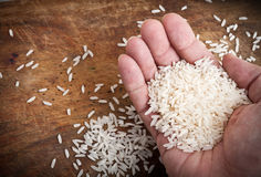 Hand with rice. Stock Photos