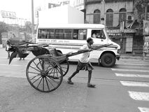 A hand rickshaw puller pulls his rickshaw in the middle of the road. Royalty Free Stock Image