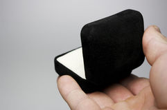 Hand with Ring Box Stock Image