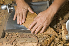 Hand rolling cigar production Royalty Free Stock Image