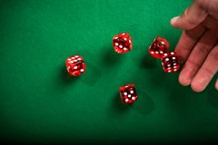 Hand rolling red dices on table.  Royalty Free Stock Image