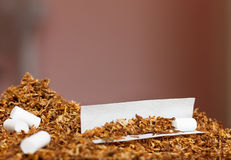 Hand rolling tobacco and paper. Tobacco rolling paper and filter ready to be rolled to a cigarette Royalty Free Stock Image