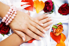 Hand and rose Stock Photography