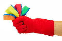 Hand in rubber glove Royalty Free Stock Photos