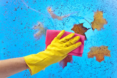 Hand in rubber glove cleaning window on a blue sky background Stock Image
