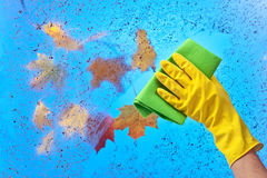Hand in rubber glove cleaning window on a blue sky background Royalty Free Stock Image