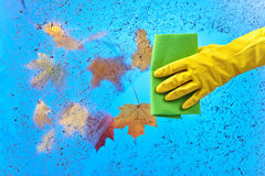 Hand in rubber glove cleaning window on a blue sky background Royalty Free Stock Photos